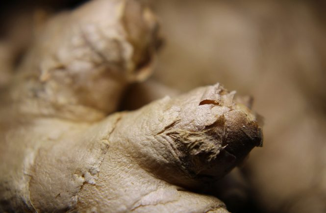 ginger herbal medicine and the gut gut health herbalist byron bay australia naturopathic gut health