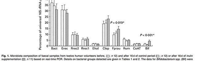Faecalibacterium prausnitzii gut health digestive health byron bay australia herbalist naturopath