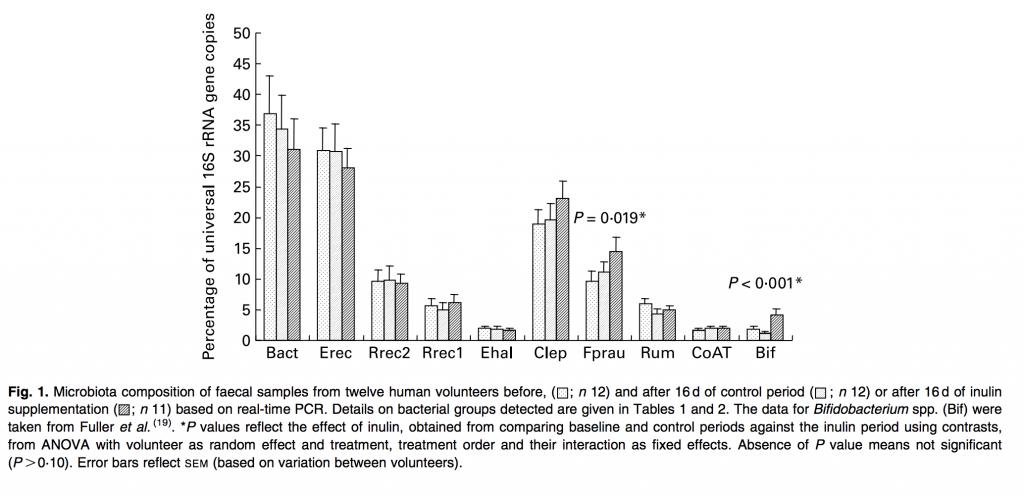 Faecalibacterium prausnitzii prebiotic gut health probiotic IBD IBS digestive health byron bay herbalist australia