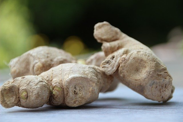 ginger as a herbal gut motility agent prokinetic SIBO treatments herbal medicine for gastroparesis natural motility